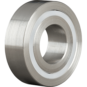 Stainless Double Row Ball Bearings